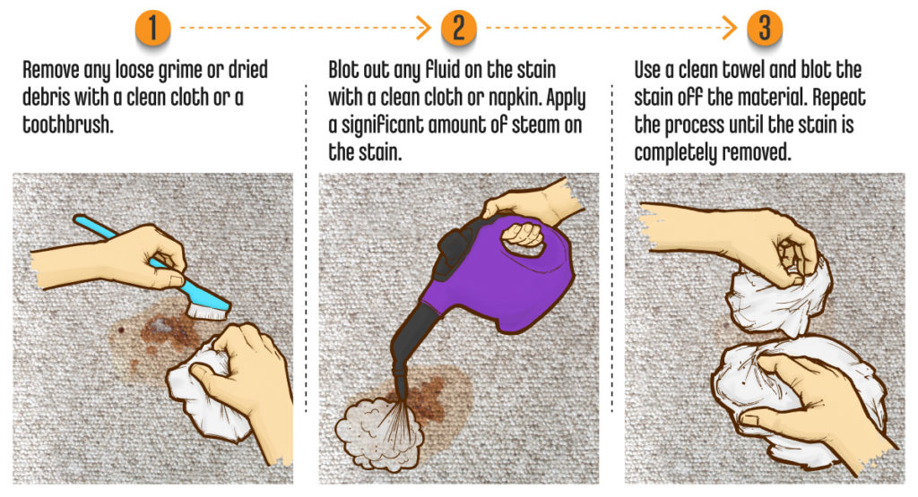 Cleaning Stains Steam Cleaner Carpet