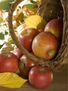 how-to-make-apple-jelly