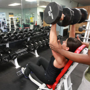 Foodies Workout Gym Exercise Equipment